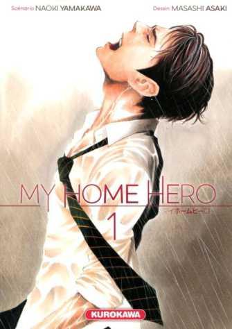 MY HOME HERO.jpg